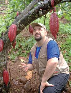 El Cacao en riesgo de extinción: reflexiones de un experto
